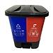 国产 双桶脚踩分类垃圾桶 40L  有害垃圾+可回收物