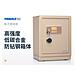 迪堡 D系列保管箱 单门 (金色磨砂) 钥匙+密码  B-33D2