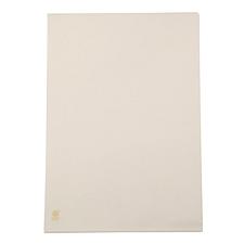 富得快 文件保护套 (透明) A4  E310