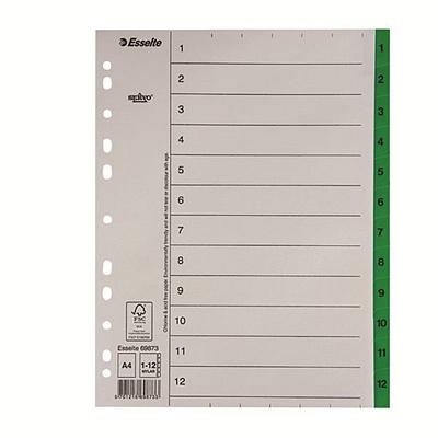 易达 数字纸质分类索引 A4 11孔 12级  56117(69873)