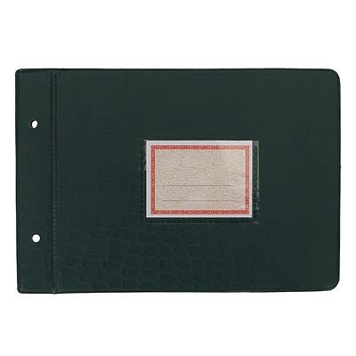 立信 塑料账夹 (蓝、绿) 25K(231*158mm)  2902-25