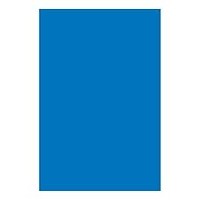 日磁蕾 磁片 (蓝) A4  200*300
