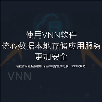 软众 VNN远程服务器