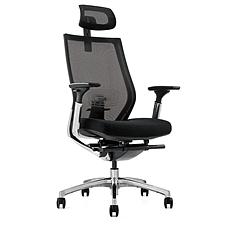 吴俚 网布人体工学办公椅 (黑)  WL-1665A