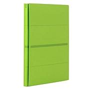 普乐士 可调式背宽装订文件夹 (淡绿) A4  FL-021SS-10P-NGR
