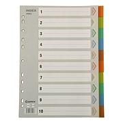 齐心 彩色胶质分类索引 (彩色) 10级  IX902